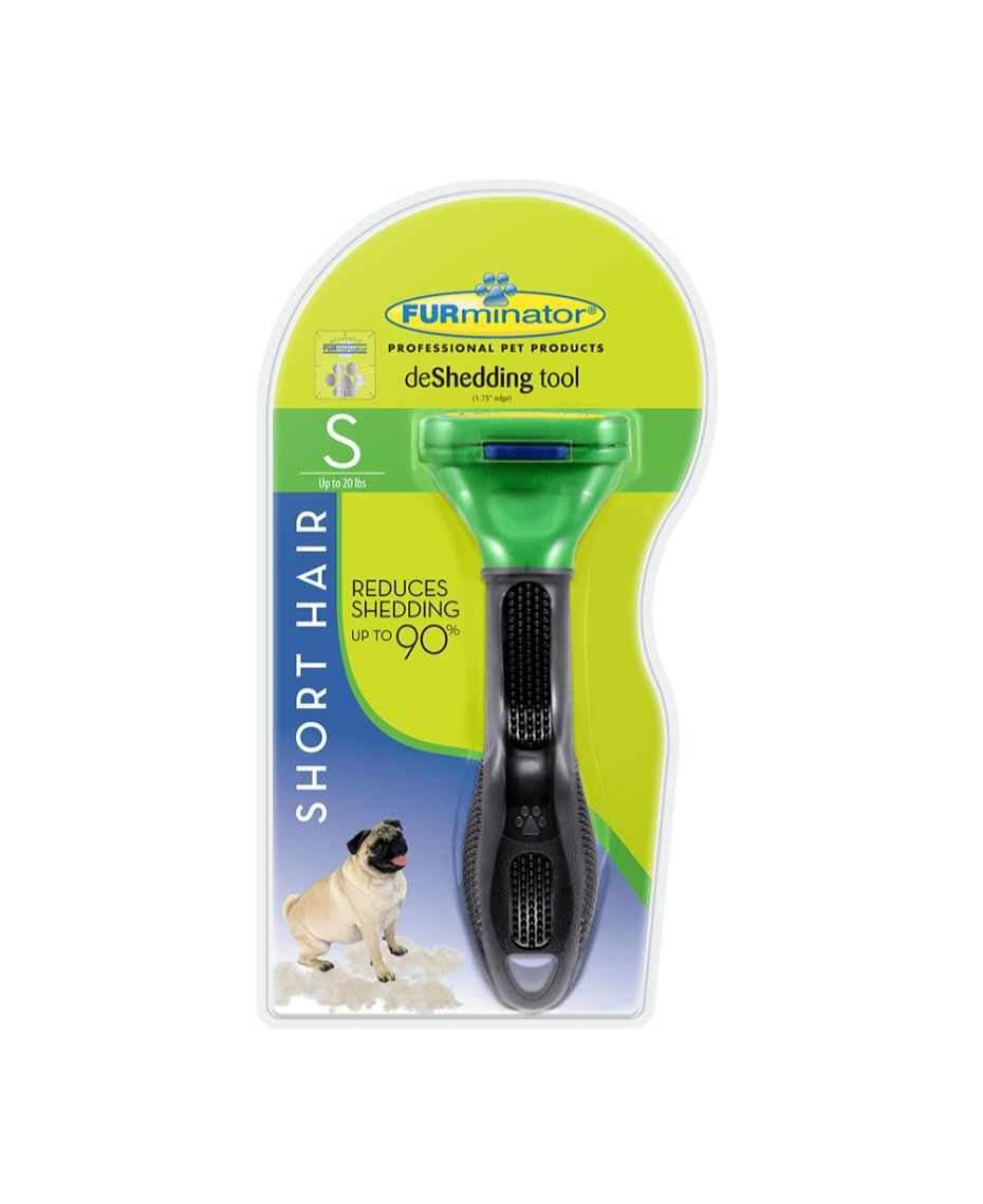 Small Dog Short Hair Brush