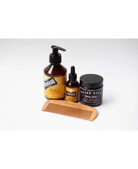 Beard Kit - Wood & Spice